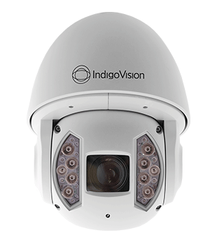 cds-Indigo-Vision